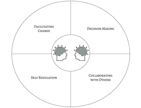 NeuroLeadership Wheel | Clarifications Coaching LLC