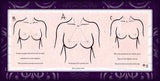 NippleBacks - !NEW! Mermaid - 12 count