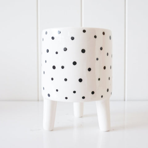 Black & White Polka Dot Crazy Leg Planter