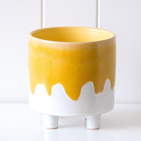 Dripping Mustard Planter