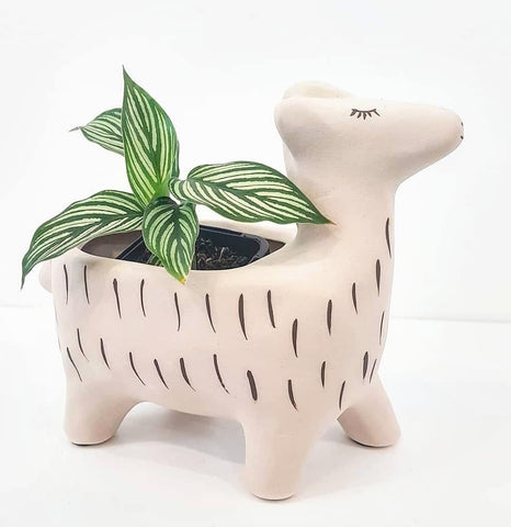 Ceramic Llama. Indoor planter for houseplants. Llama. Alpaca. Cute planter