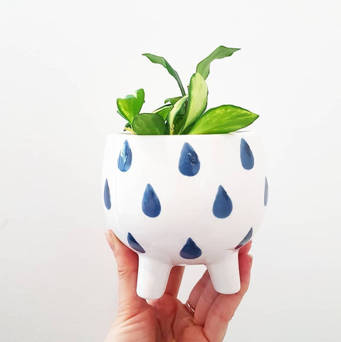 Mini Planter Pot Droplets