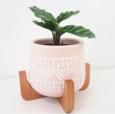 Tova Planter Pot on Stand in Pink