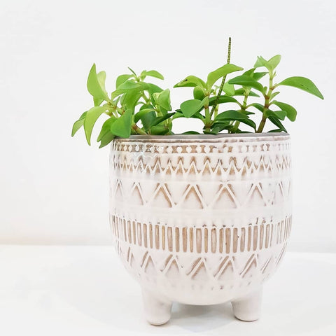 White Pattern Pot on Feet