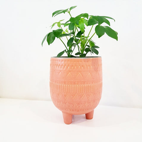 Terracotta Pattern Pot on Feet