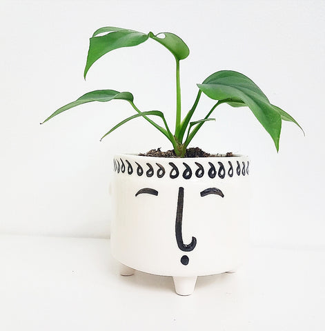 Tranquil Face Planter