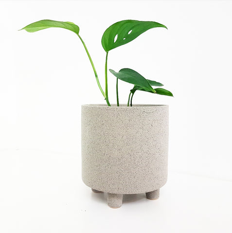 Grey Cresta Pot - Medium
