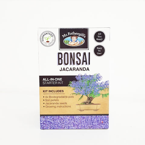 Bonsai Jacaranda All In One Starter Kit