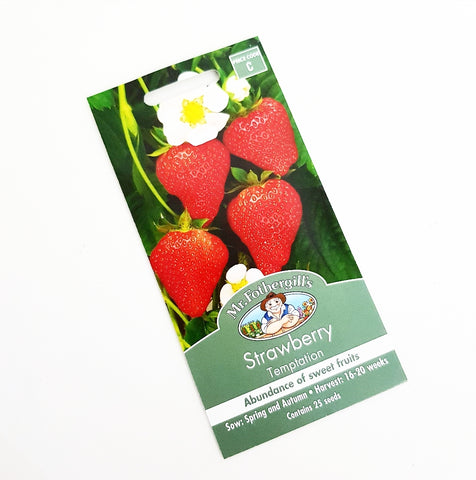 Strawberry Temptation Seeds
