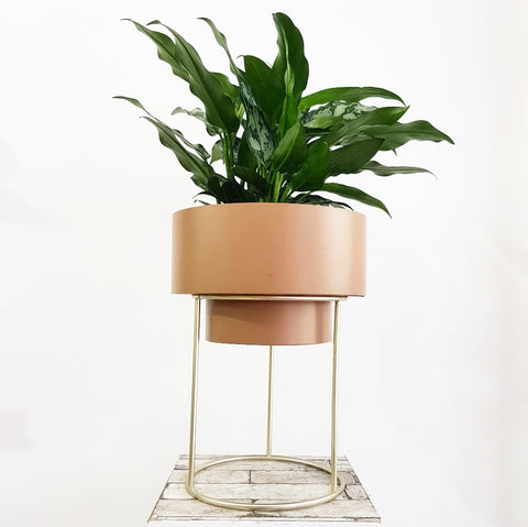 Mathias Metal Planter and Stand *Click & Collect Only*