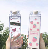 Reusable Clear Carton Bottle