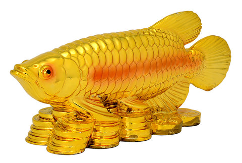 Fengshui Golden Fish with Coins