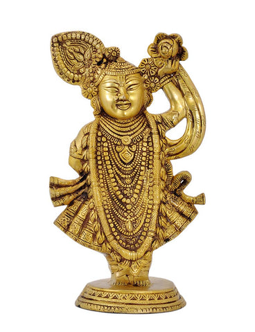 Shrinathji - The Living Child Form of Lord Krishna 12""