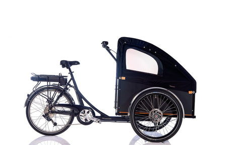 Electric Cargo Bike - Unisex