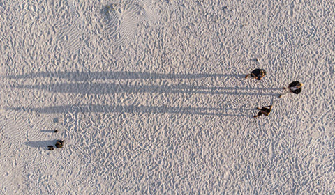 Drone img of three people on white sand beach