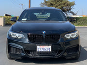 F22 2 Series Vision Retrofit (Halogen headlights only)
