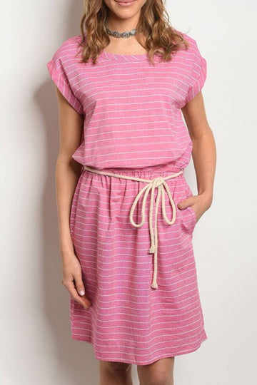 The Pink Chambray Dress
