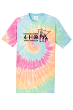Load image into Gallery viewer, ADULT TIE DYE TEE
