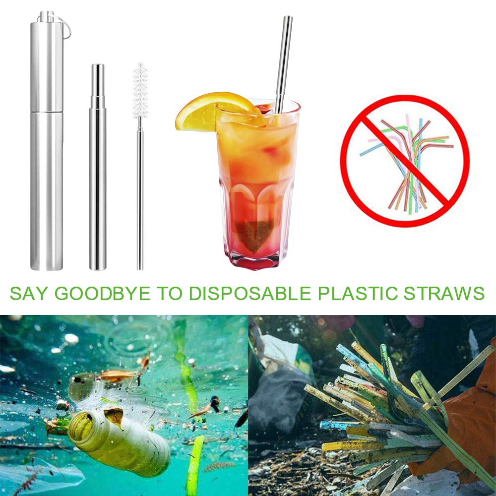 2019 New Extendable Stainless Steel Straws