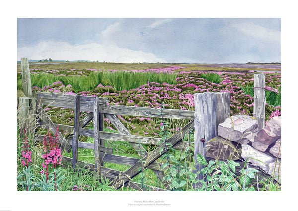 Fine art giclée print of Derbyshire landscape with gate and field.