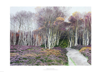 Fine art giclée print of woods and heather in Derbyshire UK