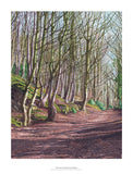Woods on Halmar Road by Rosalind Forster