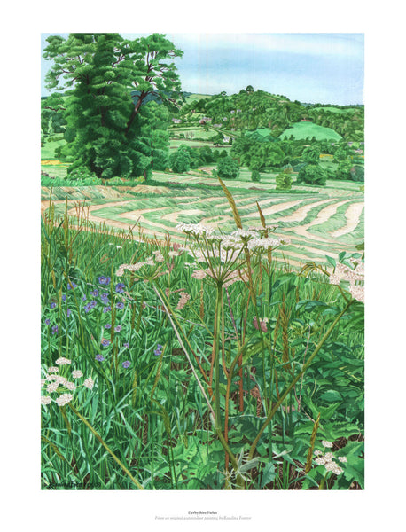 Fine art giclée print from watercolour original of field and fauna in UK