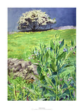 Fine art giclée print of tree and approaching storm