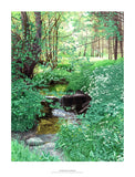 Fine art giclée print of stream and woods in UK