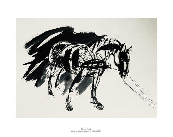 Horse Study inspired by War Horse by Julia Midgley