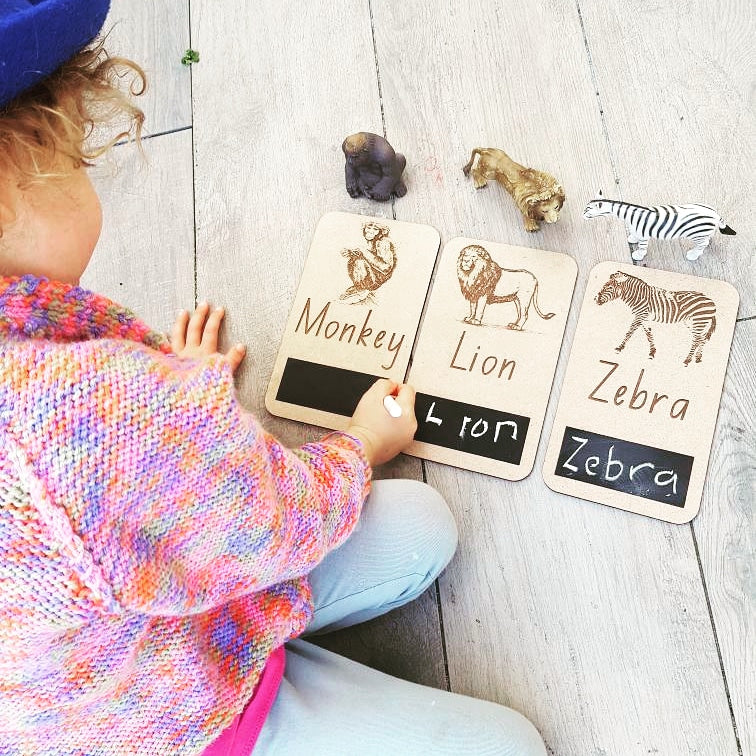 Zoo Animal Flash Cards