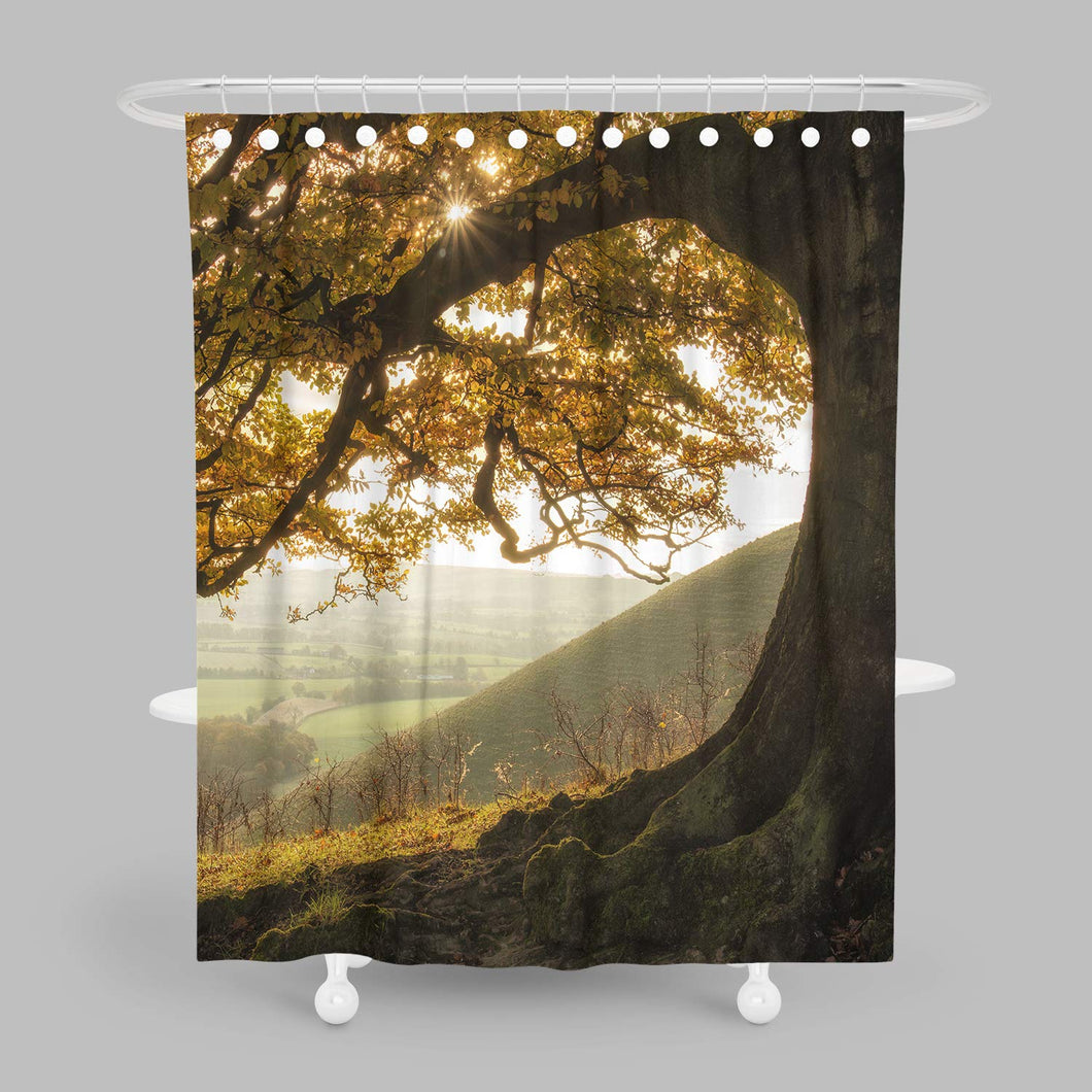 Shower Curtain autumn fall scene beautiful autumnal park beauty nature scene autumn trees and leaves foggy Prints Bathroom Decor Set with Hooks Forest Tree Graphics Shower Curtain Liner 54x78 Inches
