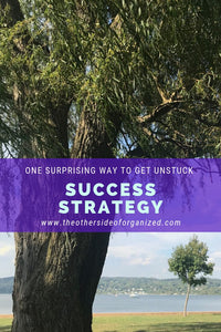 One Surprising Success Strategy to Get You Unstuck