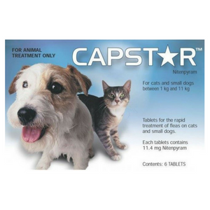 Capstar Flea Tablets for Cats & Small Dogs-Dog Flea Treatment-PDSA Pet & Gift Store