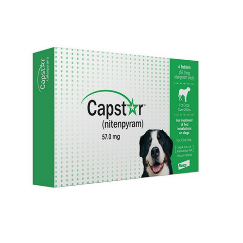 Capstar Flea Tablets for Large Dogs-Dog Flea Treatment-PDSA Pet & Gift Store