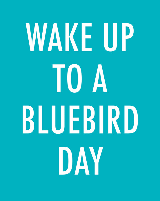 WAKE UP TO A BLUEBIRD DAY - Color Pop Print