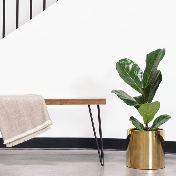 Modern Indoor Gold Ceramic Planter