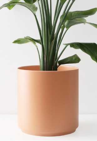 Peach and Pebble White Ceramic Planter Modern Plant Pot