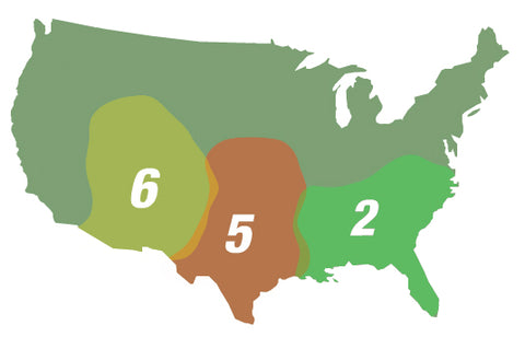 TexaClear Natural Allergy Relief Drops Allergy Zone Map