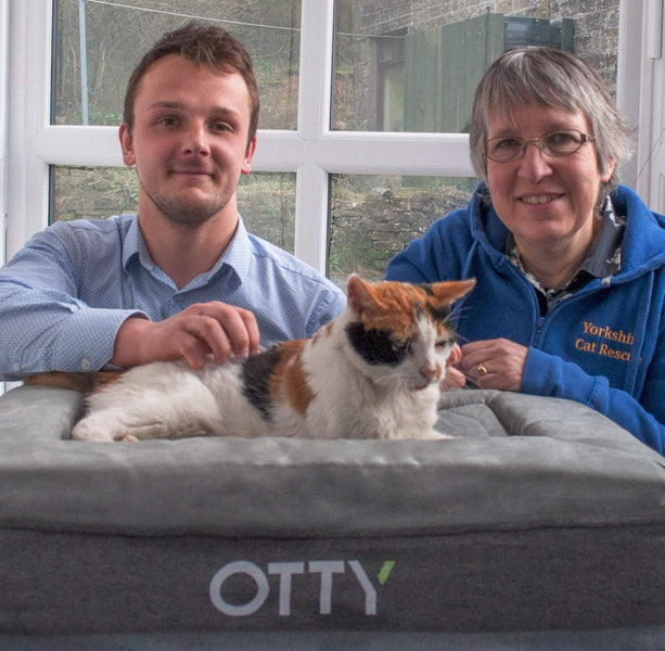 Cats bed in with OTTY