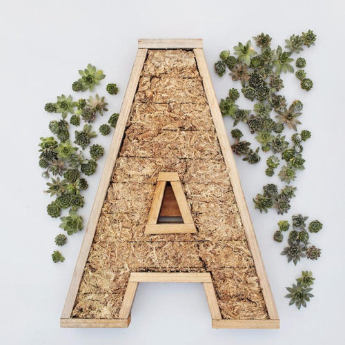 Redwood Large Letter Kit