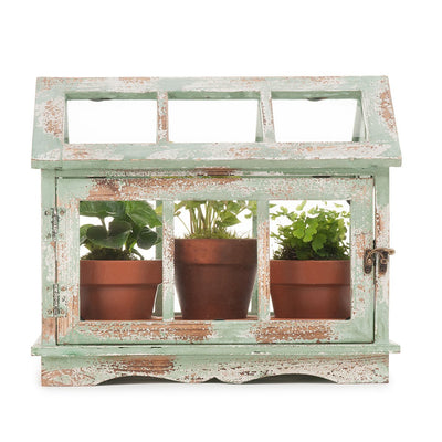 Vintage Fern Greenhouse