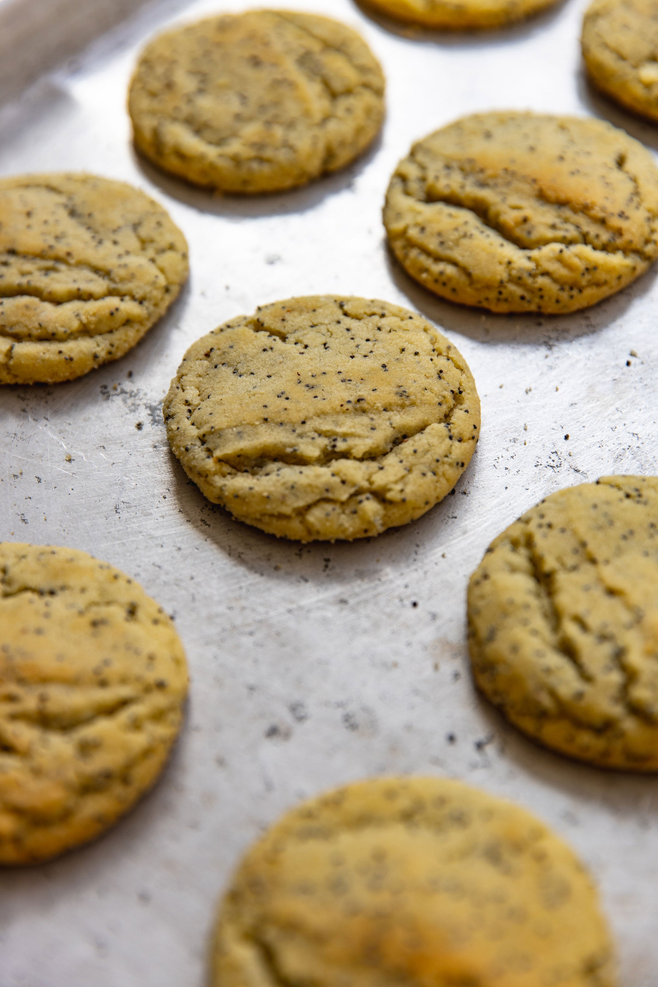 Theo Lemon Poppy Seed Cookies