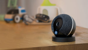 Cocoon Wins Crowdcube's Product of the Year Award | The Companionist
