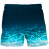 Jumpy Turtle Swim Shorts
