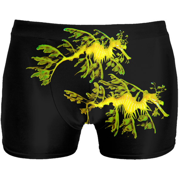Leafy Sea Dragon Couple Men's Underwear