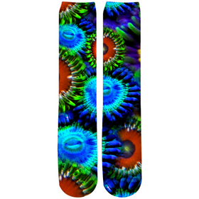 Multi Colored Zoanthid Garden Socks - Crew Knee High Socks