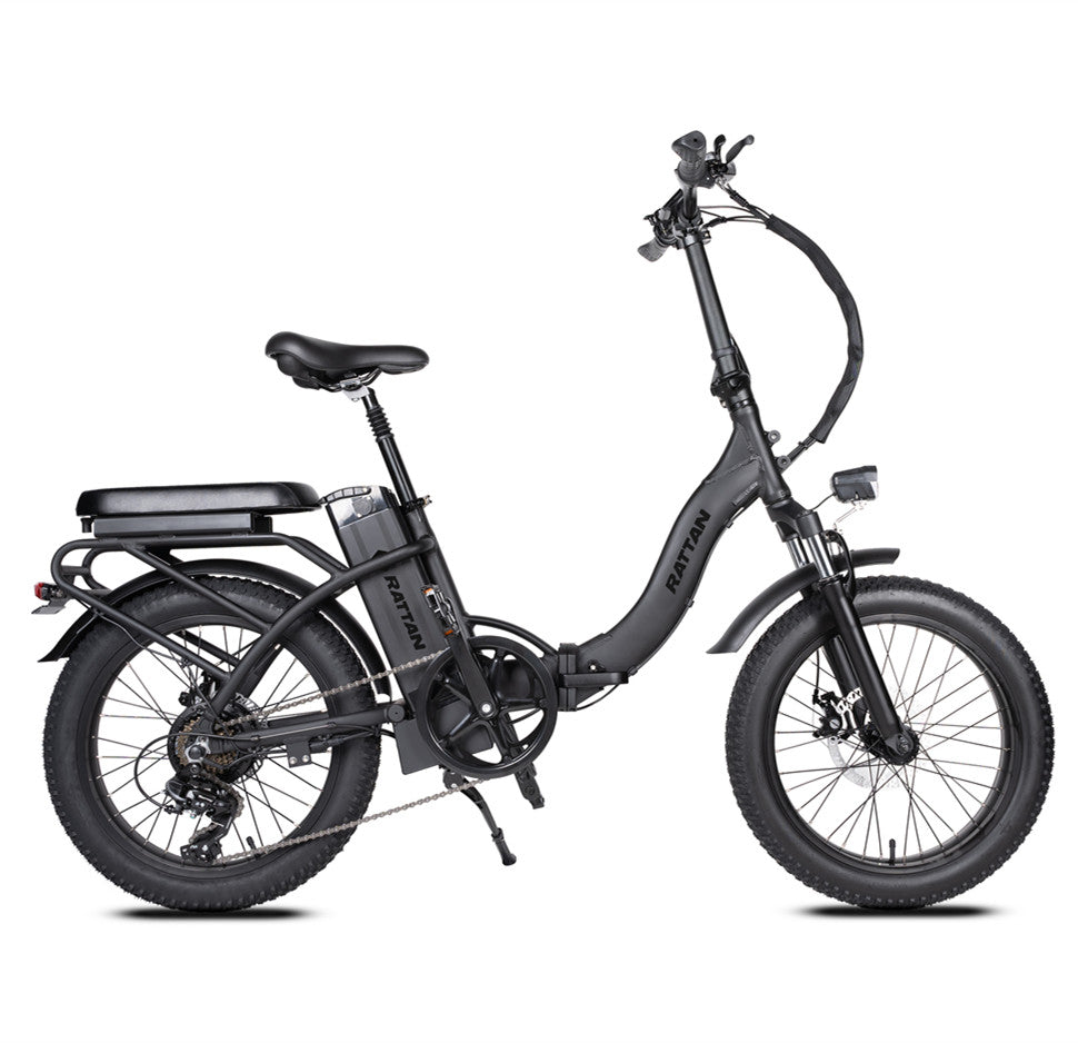 【NORTH AMERICA】LF 500W MINI Fat Tire