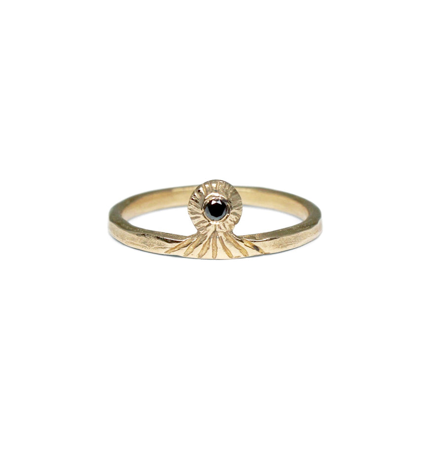 Vision Ring | Gold + Black Diamond