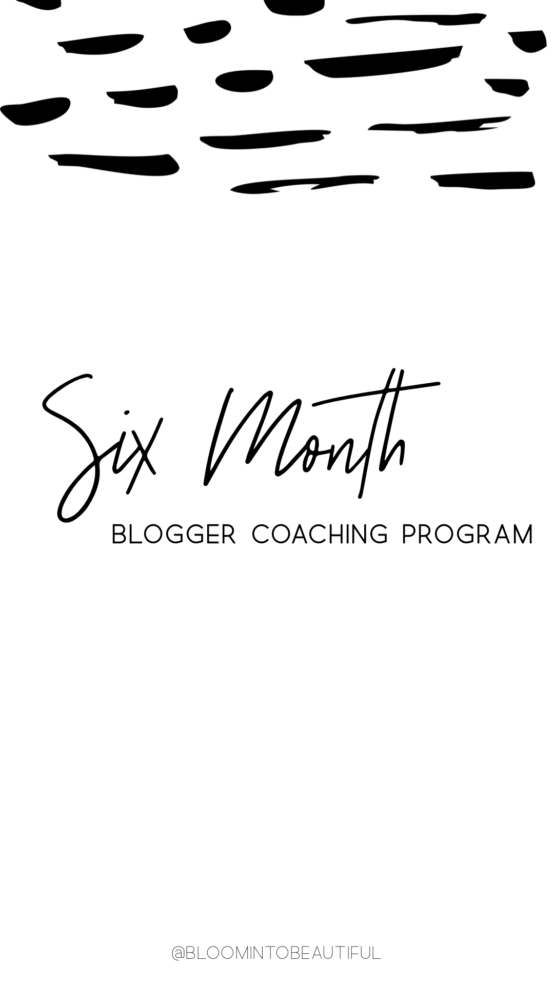 Six Month Blogger Coaching Program